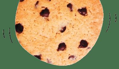 cookie-og-privatlivspolitik